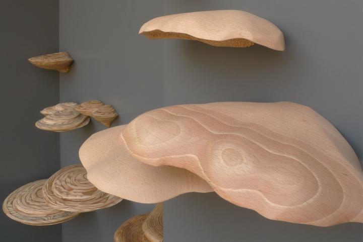 Cyprien Chabert - Fistulines